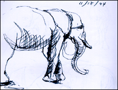 Elephant_drawing